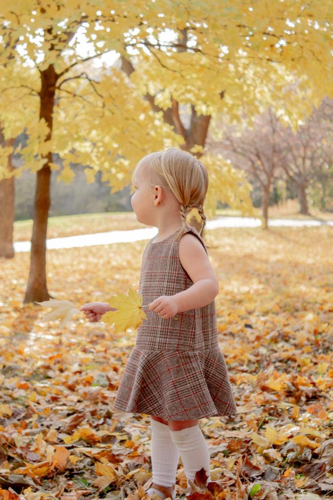 Autumn Leaves 14