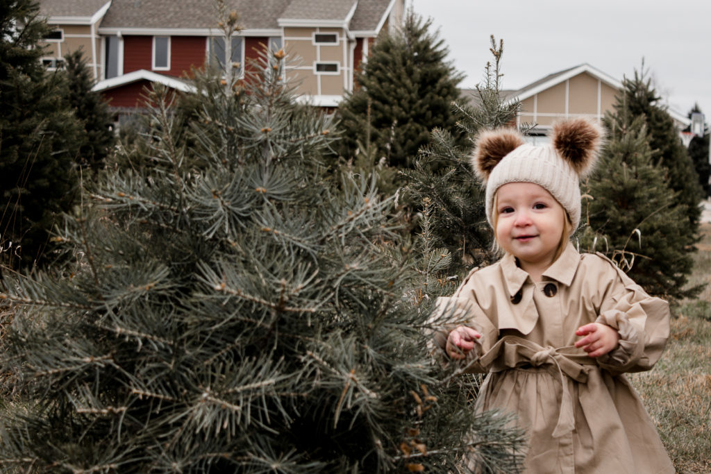 Omaha Christmas Tree Farm 9