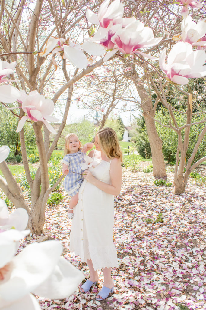 Magnolia Tree Maternity Photos 18