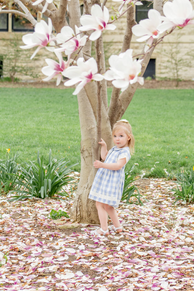 Magnolia Tree Maternity Photos 9