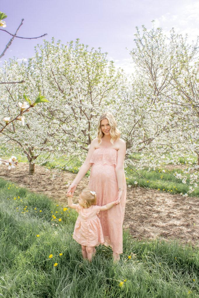 Apple Orchard 13