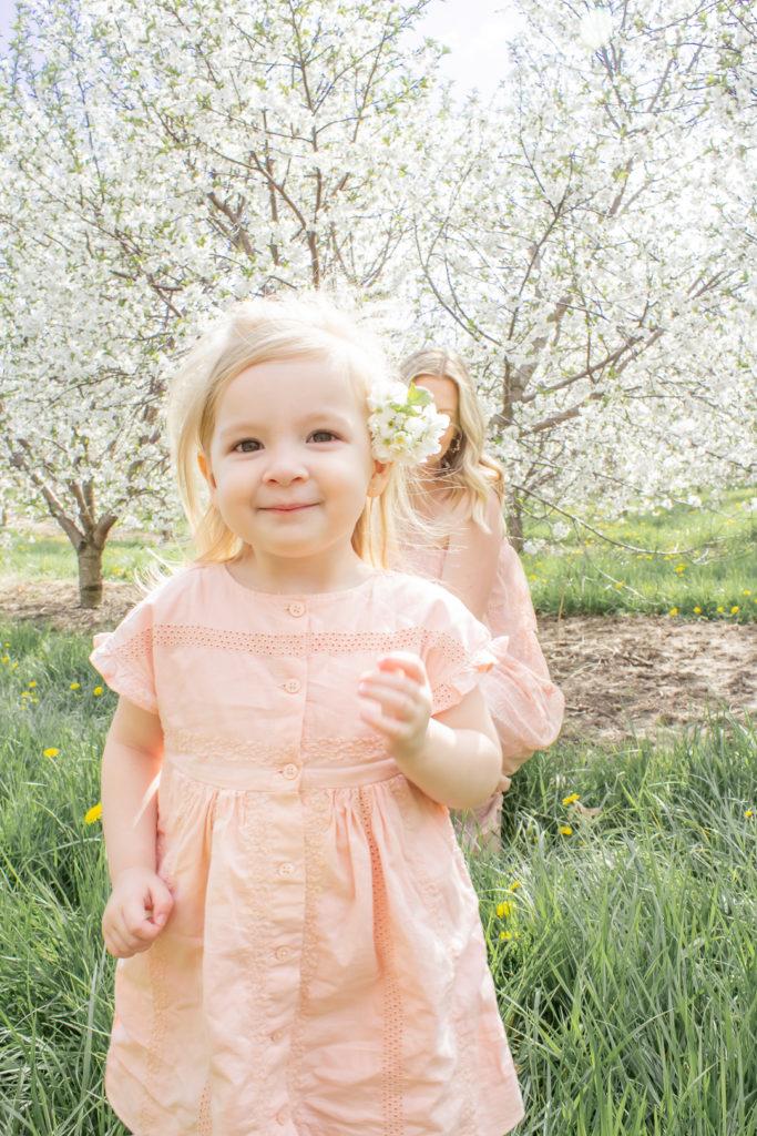 Apple Orchard 17